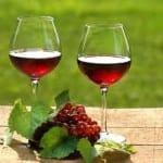 Maine Wine Tours